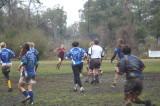 rugby 005.jpg