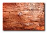 Sandstone Wall Detail