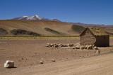 La petite maison de l'Altiplano