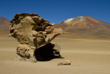 L'arbre de pierre et la montagne aux 7 couleurs. Altiplano