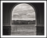 Vineyard Through the Arch/Winter Day