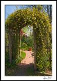 Entrance Arbor with Carolina Jessamine