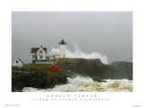 478NUBBLE LIGHTHOUSE PATRIOT'S DAY STORM POSTER- my first poster- linked below, please let folks know so i can buy the sony a900