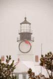 32DSC01979.jpg46 snowing today, portland head light , the queen