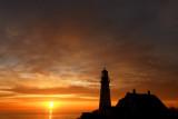 DSC09817l.jpg 14 Birds at Sunrise at portland head light
