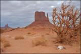 Mitten at Monument Valley