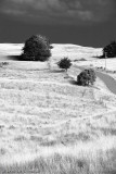 IR KI landscape