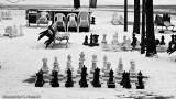 Too cold for chess