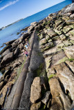 Exploring the rocks at Manly Beach