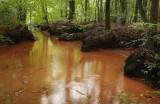 Red brook - Rode spreng, nazomer