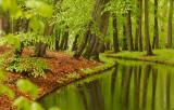 Landscapes - Landschappen