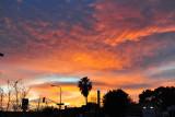 80_Sunset at Pasadena.jpg