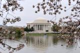 Springtime in D.C.