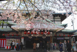 Kyoto_63.jpg