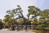 Kyoto_73.jpg