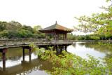Nara_15.jpg