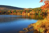 NYS in Autumn-05.jpg