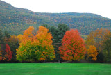 NYS in Autumn-08.jpg