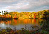 NYS in Autumn-18.jpg