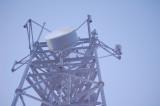 EDOC GPS antenna