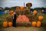 Eli, Pumpkin Picker