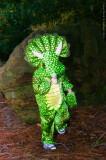 Little Dinosaur