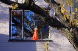 L'il Red Dress