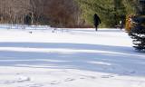A Solitary Walk