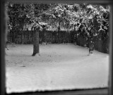 Snow through our windowpane