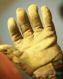 Nov 30: Glove