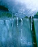 Jan 9: Still frozen
