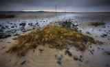 Lindisfarne Pilgrims Way (wide)