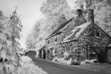 Fountains Cottage in IR
