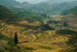 Valley near Shouning