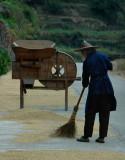 Rice grinder at work