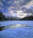 Winter Curtain