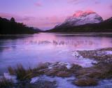 Loch Clair Blush