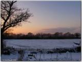 Wintry Landscape