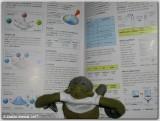 Chimp does homework