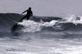 samoa_surfin