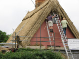 Thatching in Thaxted, Essex