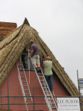 Thatching in Thaxted