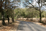 Parte de la Ruta Hacia la Cabecera