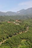 Beneficio de Cafe en las Montañas Cercanas