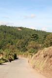 Caminos Hacia Aldeas del Municipio