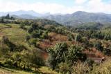 Panoramica de Cultivos en Montañas del Municipio