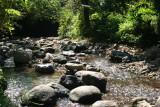 Rio Magdalena a su Paso por la Cabecera