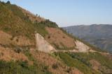 Ruta a la Cabecera (Cultivos de Maiz)