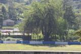 Campo de Futbol Local