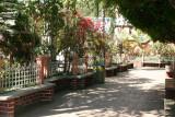 Jardinizacion del Parque Central
